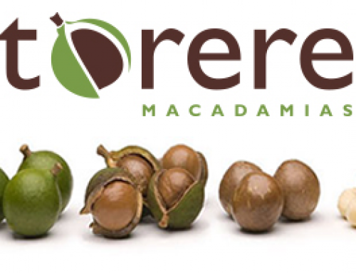 Torere Macadamias