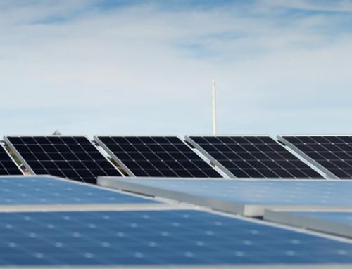 Māori and Vietnamese companies launch international solar solutions